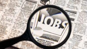 disoccupazione in calo