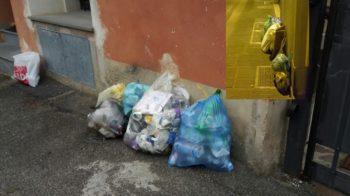 Rifiuti Grignasco i sacchetti distrutti durante la notte