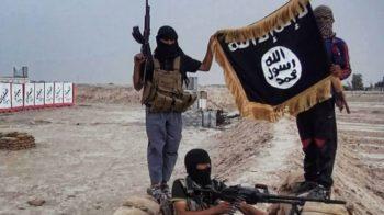 accuse di terrorismo