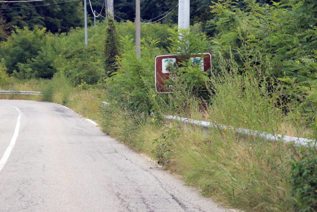 strade e cartelli