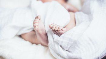 calo delle nascite