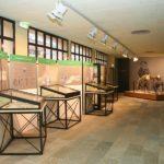 museo borgosesia