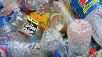 valsesia plastic free