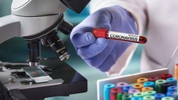 coronavirus piemonte