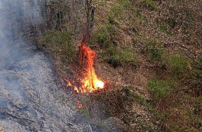 Coggiola fiamme