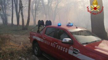 incendio nei boschi