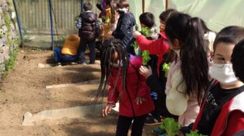 Alunni Coggiola imparano a coltivare l'orto